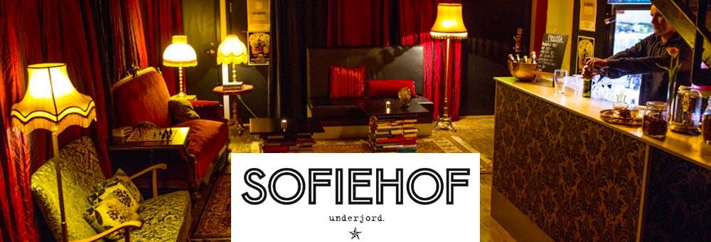 Sofiehof_Underjord_2016
