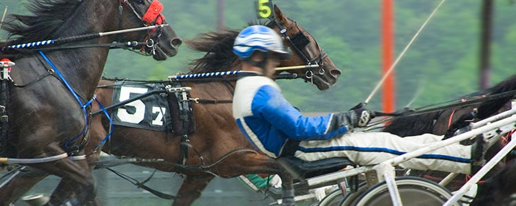 trotting_horseraces_750x300