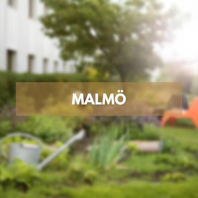 Enjoy this fall in Malmö
