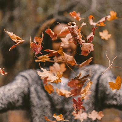Der Herbst wartet schon auf Sie